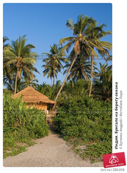 Индия. Бунгало на берегу океана, фото № 250018, снято 27 декабря 2007 г. (c) Бутенко Андрей / Фотобанк Лори