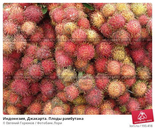 Индонезия, Джакарта. Плоды рамбутана, фото № 193418, снято 3 февраля 2008 г. (c) Евгений Горюнов / Фотобанк Лори