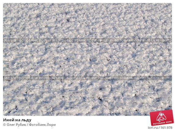 Иней на льду, фото № 161978, снято 26 декабря 2007 г. (c) Олег Рубик / Фотобанк Лори