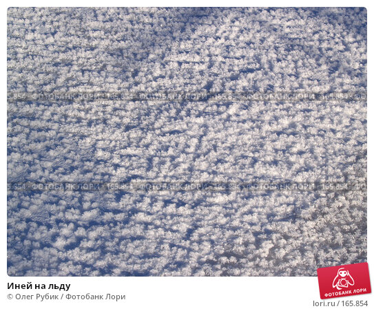 Иней на льду, фото № 165854, снято 4 января 2008 г. (c) Олег Рубик / Фотобанк Лори