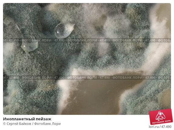 Инопланетный пейзаж, фото № 47490, снято 22 октября 2005 г. (c) Сергей Байков / Фотобанк Лори