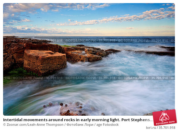 Intertidal movements around rocks in early morning light. Port Stephens... Стоковое фото, фотограф Zoonar.com/Leah-Anne Thompson / age Fotostock / Фотобанк Лори