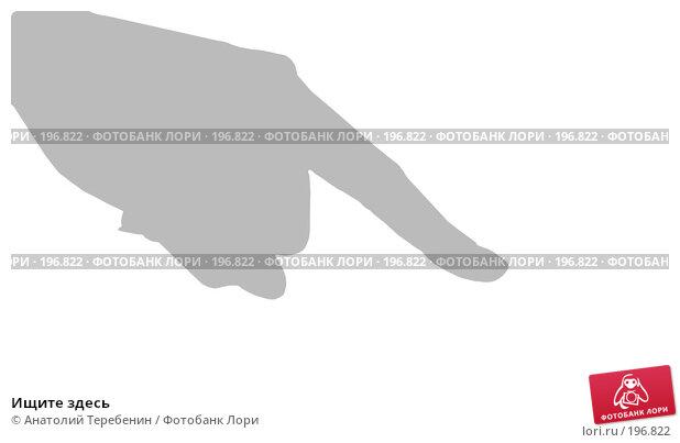 Купить «Ищите здесь», иллюстрация № 196822 (c) Анатолий Теребенин / Фотобанк Лори