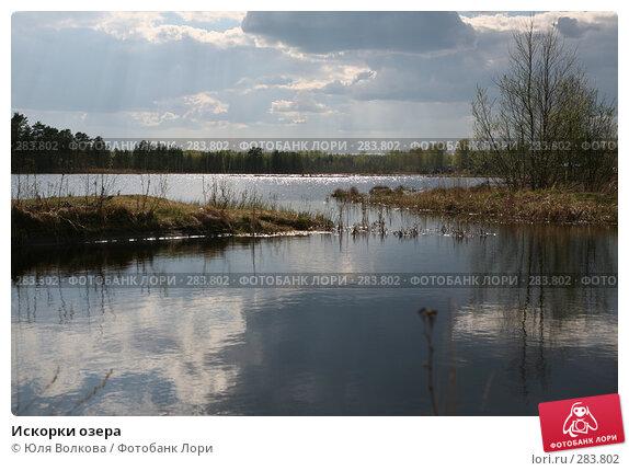 Искорки озера, фото № 283802, снято 2 мая 2008 г. (c) Юля Волкова / Фотобанк Лори