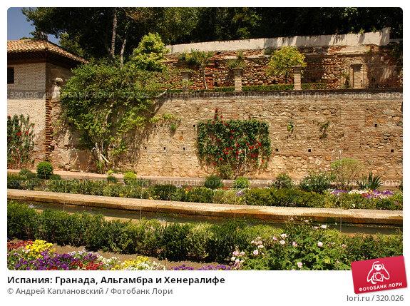 Испания: Гранада, Альгамбра и Хенералифе, фото № 320026, снято 1 мая 2008 г. (c) Андрей Каплановский / Фотобанк Лори