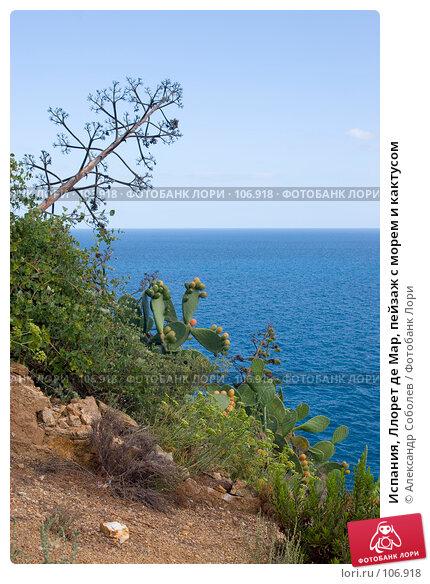Купить «Испания, Ллорет де Мар, пейзаж с морем и кактусом», фото № 106918, снято 20 августа 2007 г. (c) Александр Соболев / Фотобанк Лори