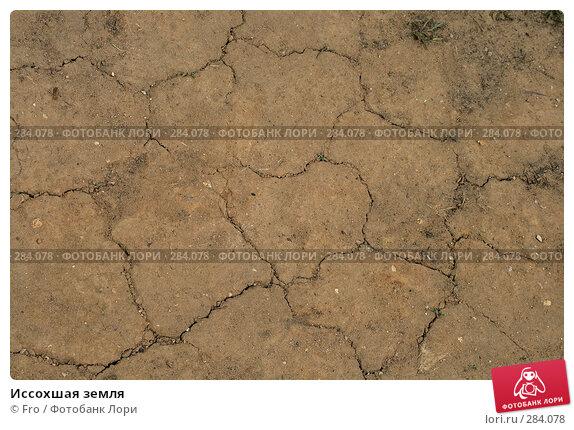 Иссохшая земля, фото № 284078, снято 10 мая 2008 г. (c) Fro / Фотобанк Лори