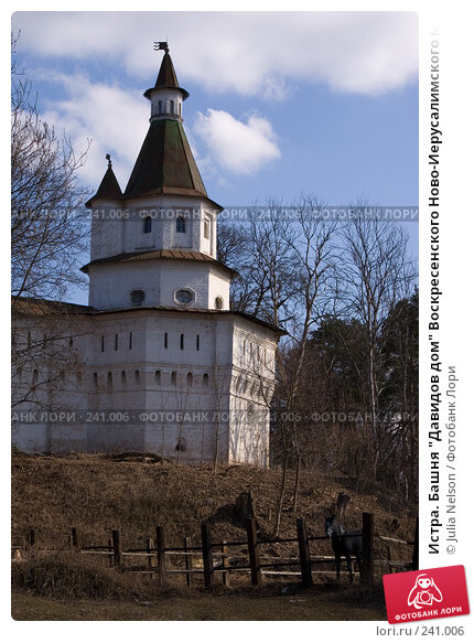 """Истра. Башня """"Давидов дом"""" Воскресенского Ново-Иерусалимского монастыря, фото № 241006, снято 29 марта 2008 г. (c) Julia Nelson / Фотобанк Лори"""