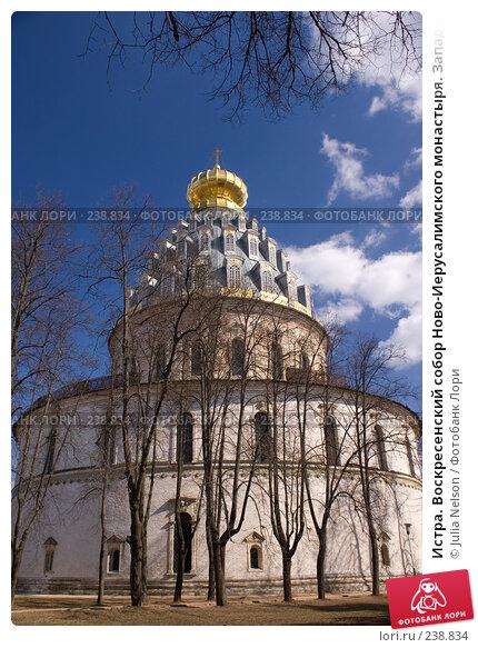 Истра. Воскресенский собор Ново-Иерусалимского монастыря. Западный фасад, фото № 238834, снято 29 марта 2008 г. (c) Julia Nelson / Фотобанк Лори