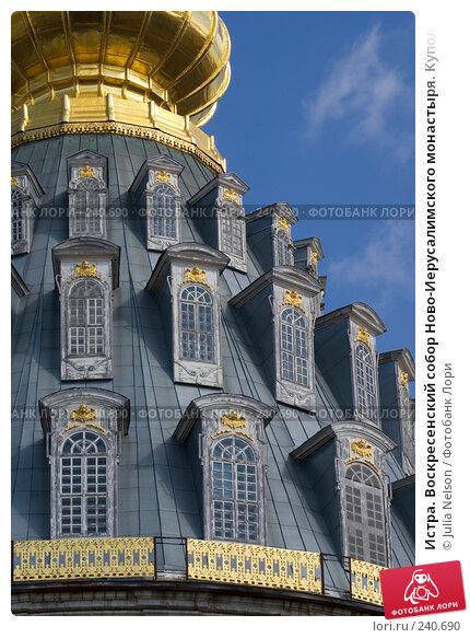 Истра. Воскресенский собор Ново-Иерусалимского монастыря. Купол. Вид с запада, фото № 240690, снято 29 марта 2008 г. (c) Julia Nelson / Фотобанк Лори