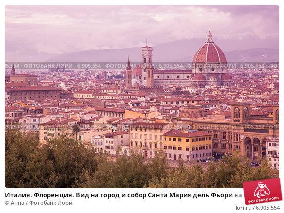 my trip to rome teen essay about europe and essay essay bookragscom