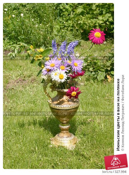 Июньские цветы в вазе на полянке, фото № 327994, снято 18 июня 2008 г. (c) Коннов Леонид Петрович / Фотобанк Лори