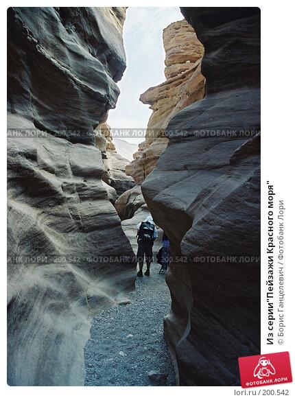 "Из серии""Пейзажи Красного моря"", фото № 200542, снято 21 сентября 2017 г. (c) Борис Ганцелевич / Фотобанк Лори"