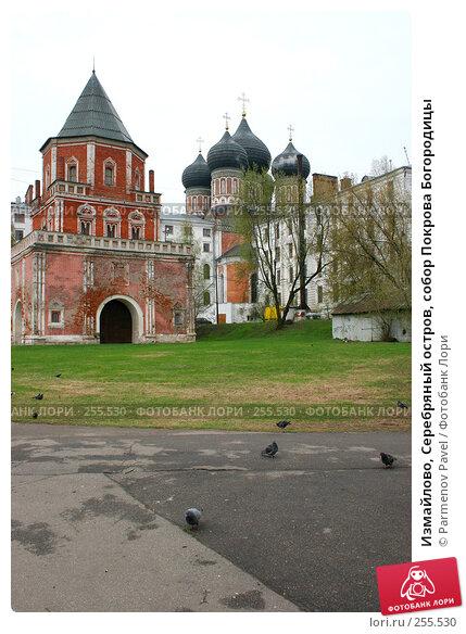 Измайлово, Серебряный остров, собор Покрова Богородицы, фото № 255530, снято 17 апреля 2008 г. (c) Parmenov Pavel / Фотобанк Лори