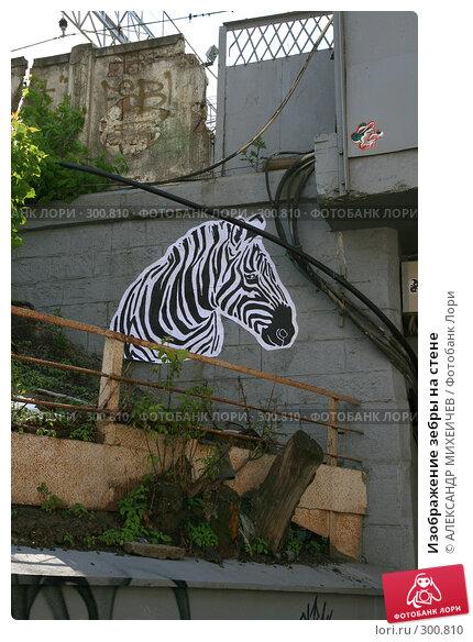 Изображение зебры на стене, фото № 300810, снято 18 мая 2008 г. (c) АЛЕКСАНДР МИХЕИЧЕВ / Фотобанк Лори