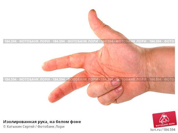 Изолированная рука, на белом фоне, фото № 184594, снято 16 декабря 2007 г. (c) Катыкин Сергей / Фотобанк Лори