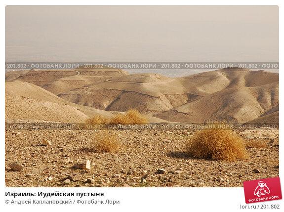 Израиль: Иудейская пустыня, фото № 201802, снято 31 декабря 2007 г. (c) Андрей Каплановский / Фотобанк Лори