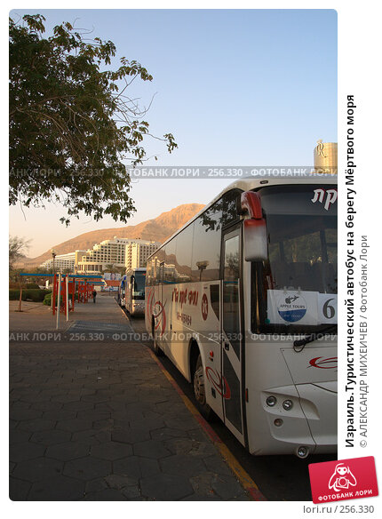 Израиль.Туристический автобус на берегу Мёртвого моря, фото № 256330, снято 22 февраля 2008 г. (c) АЛЕКСАНДР МИХЕИЧЕВ / Фотобанк Лори