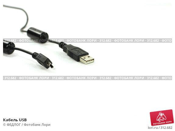 Купить «Кабель USB», фото № 312682, снято 6 июня 2008 г. (c) ФЕДЛОГ.РФ / Фотобанк Лори