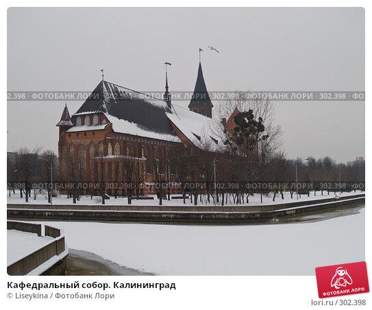 Купить «Кафедральный собор. Калининград», фото № 302398, снято 7 января 2008 г. (c) Liseykina / Фотобанк Лори
