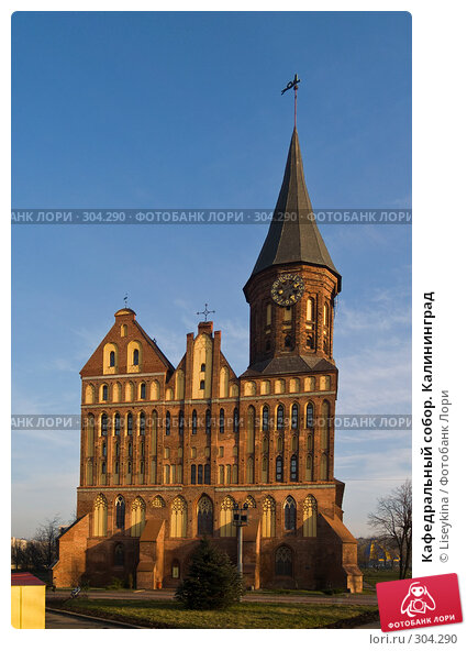 Кафедральный собор. Калининград, фото № 304290, снято 30 декабря 2007 г. (c) Liseykina / Фотобанк Лори