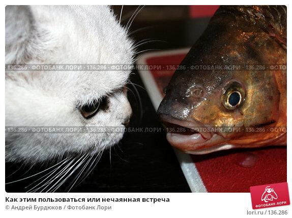 Как этим пользоваться или нечаянная встреча, фото № 136286, снято 6 мая 2007 г. (c) Андрей Бурдюков / Фотобанк Лори