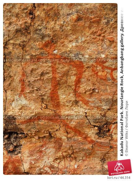 Kakadu National Park. Nourlangie Rock, Anbangbang gallery. Древнее изображение бегущего человека, фото № 44314, снято 4 июня 2007 г. (c) Eleanor Wilks / Фотобанк Лори