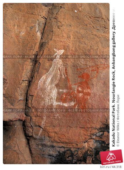Купить «Kakadu National Park. Nourlangie Rock, Anbangbang gallery. Древнее изображение охоты на кенгуру», фото № 44318, снято 4 июня 2007 г. (c) Eleanor Wilks / Фотобанк Лори