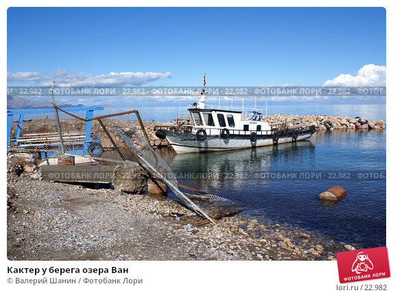 Кактер у берега озера Ван, фото № 22982, снято 3 ноября 2006 г. (c) Валерий Шанин / Фотобанк Лори