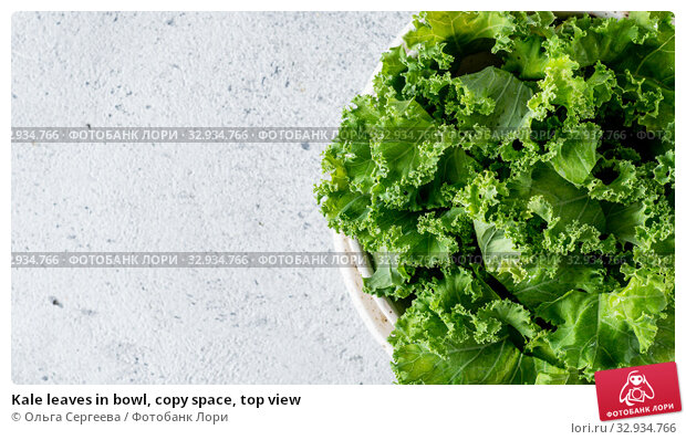 Купить «Kale leaves in bowl, copy space, top view», фото № 32934766, снято 2 августа 2019 г. (c) Ольга Сергеева / Фотобанк Лори
