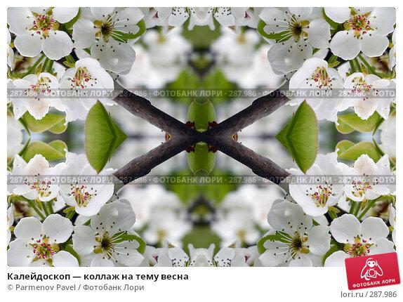 Купить «Калейдоскоп — коллаж на тему весна», фото № 287986, снято 10 мая 2008 г. (c) Parmenov Pavel / Фотобанк Лори