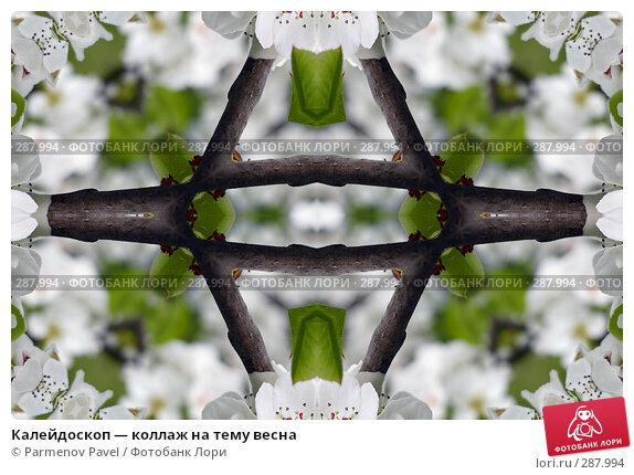Калейдоскоп — коллаж на тему весна, фото № 287994, снято 10 мая 2008 г. (c) Parmenov Pavel / Фотобанк Лори
