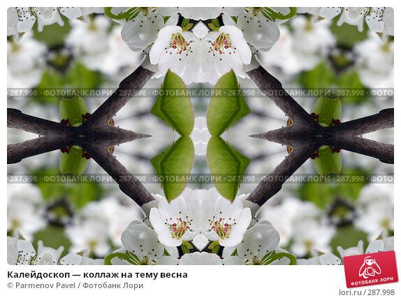 Калейдоскоп — коллаж на тему весна, фото № 287998, снято 10 мая 2008 г. (c) Parmenov Pavel / Фотобанк Лори