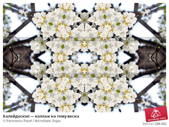 Купить «Калейдоскоп — коллаж на тему весна», фото № 288002, снято 10 мая 2008 г. (c) Parmenov Pavel / Фотобанк Лори