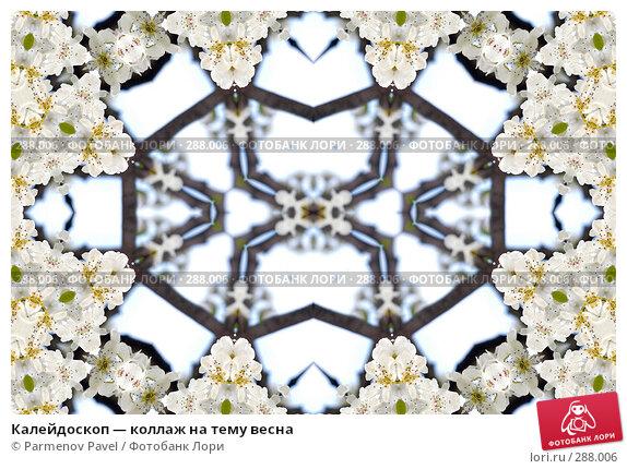 Калейдоскоп — коллаж на тему весна, фото № 288006, снято 10 мая 2008 г. (c) Parmenov Pavel / Фотобанк Лори