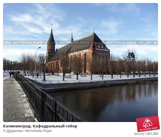 Калининград. Кафедральный собор, фото № 301450, снято 25 января 2007 г. (c) Дудакова / Фотобанк Лори