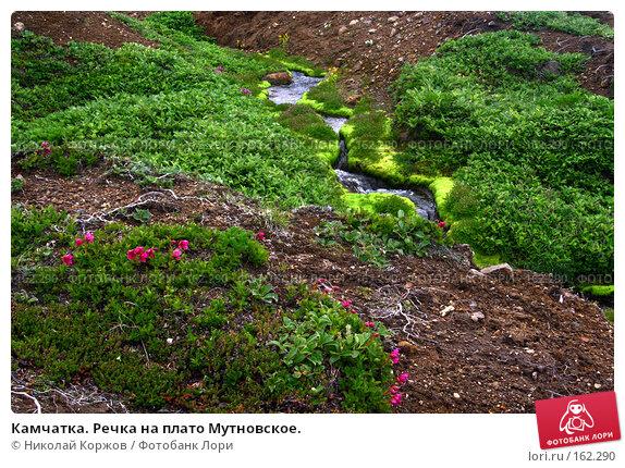 Камчатка. Речка на плато Мутновское., фото № 162290, снято 27 июня 2007 г. (c) Николай Коржов / Фотобанк Лори