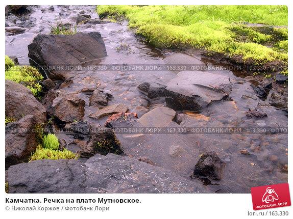 Камчатка. Речка на плато Мутновское., фото № 163330, снято 27 июня 2007 г. (c) Николай Коржов / Фотобанк Лори