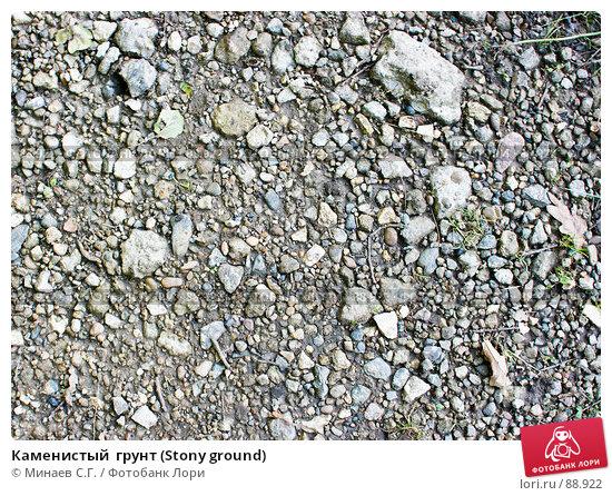 Купить «Каменистый  грунт (Stony ground)», фото № 88922, снято 22 сентября 2007 г. (c) Минаев С.Г. / Фотобанк Лори