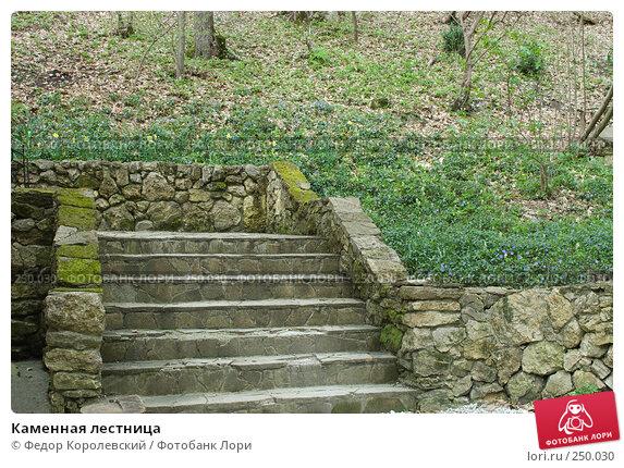 Купить «Каменная лестница», фото № 250030, снято 12 апреля 2008 г. (c) Федор Королевский / Фотобанк Лори