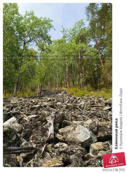 Каменная река, фото № 26310, снято 11 августа 2005 г. (c) Кузнецов Андрей / Фотобанк Лори