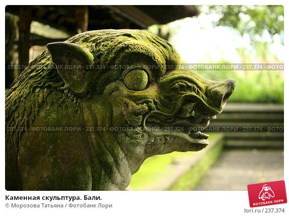 Каменная скульптура. Бали., фото № 237374, снято 24 февраля 2008 г. (c) Морозова Татьяна / Фотобанк Лори