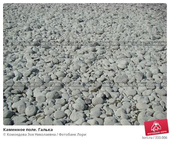 Каменное поле. Галька, фото № 333006, снято 15 июня 2008 г. (c) Комоедова Зоя Николаевна / Фотобанк Лори