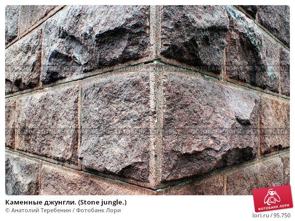 Каменные джунгли. (Stone jungle.), фото № 95750, снято 8 октября 2007 г. (c) Анатолий Теребенин / Фотобанк Лори