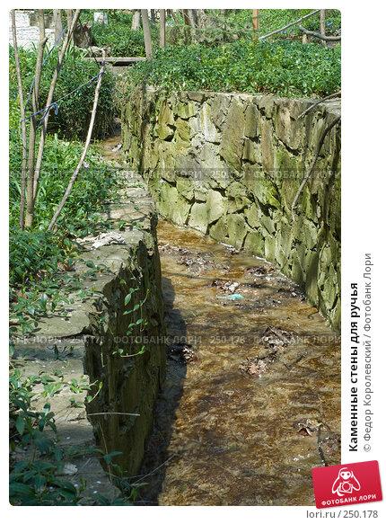 Каменные стены для ручья, фото № 250178, снято 12 апреля 2008 г. (c) Федор Королевский / Фотобанк Лори