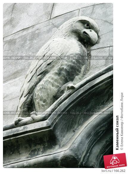Купить «Каменный сокол», фото № 166262, снято 7 сентября 2007 г. (c) Елена Каминер / Фотобанк Лори