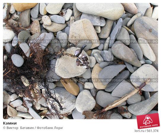 Камни. Стоковое фото, фотограф Виктор  Батавин / Фотобанк Лори