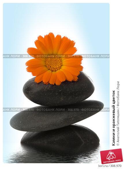 Камни и оранжевый цветок, фото № 308970, снято 30 июня 2007 г. (c) Анатолий Типляшин / Фотобанк Лори