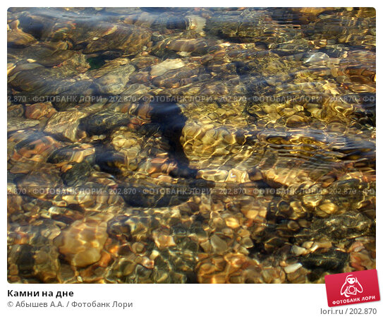 Камни на дне, фото № 202870, снято 11 августа 2006 г. (c) Абышев А.А. / Фотобанк Лори