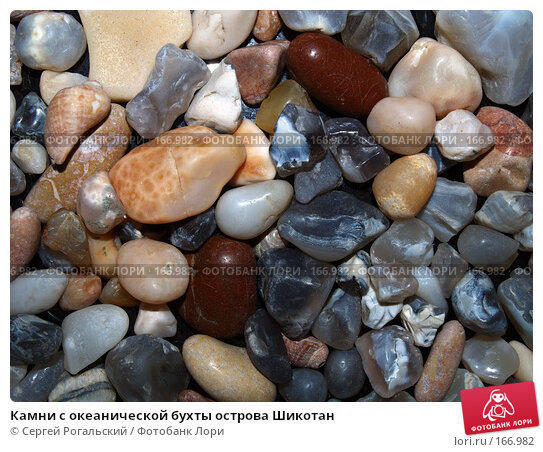 Камни с океанической бухты острова Шикотан, фото № 166982, снято 25 апреля 2017 г. (c) Сергей Рогальский / Фотобанк Лори